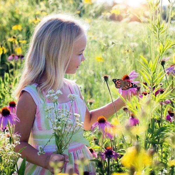 Mädchen mit Blume und Schmetterling Distelfalter raupen-kaufen.de